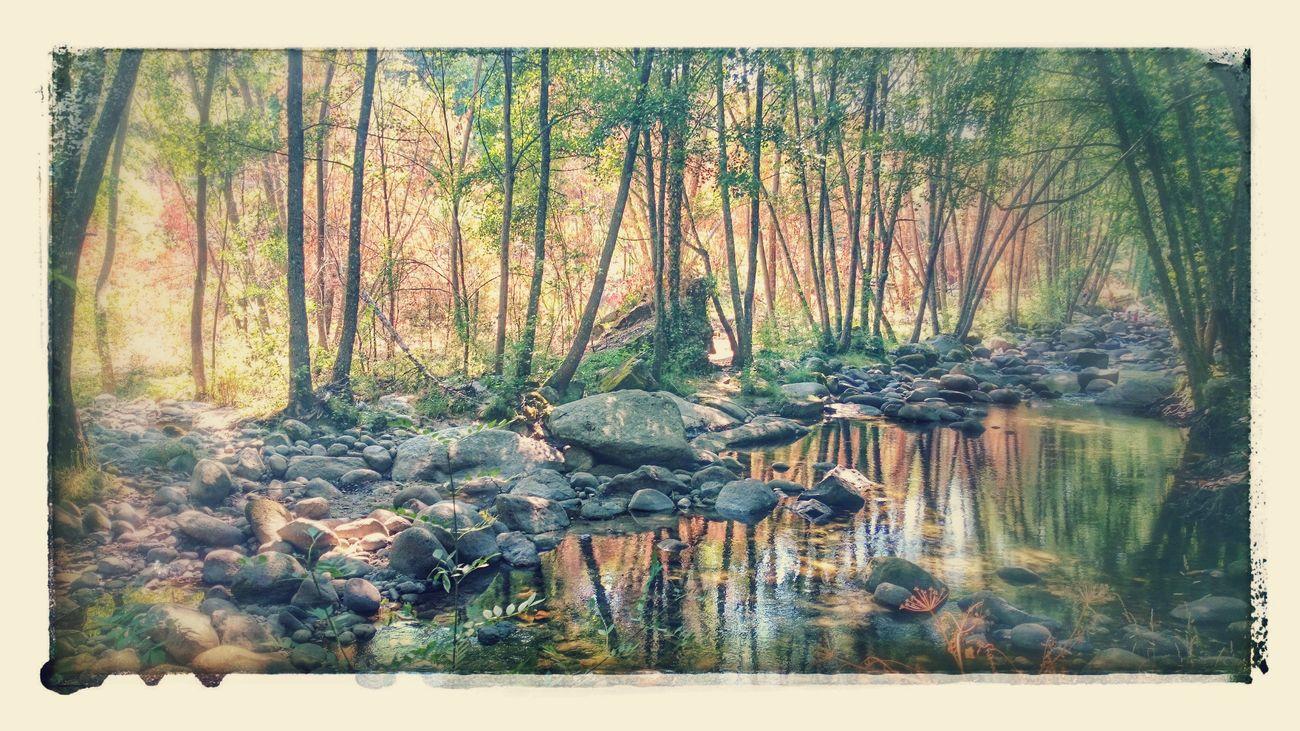 Piscina Narural Hidden Beauty Natural Beauty Water Reflections