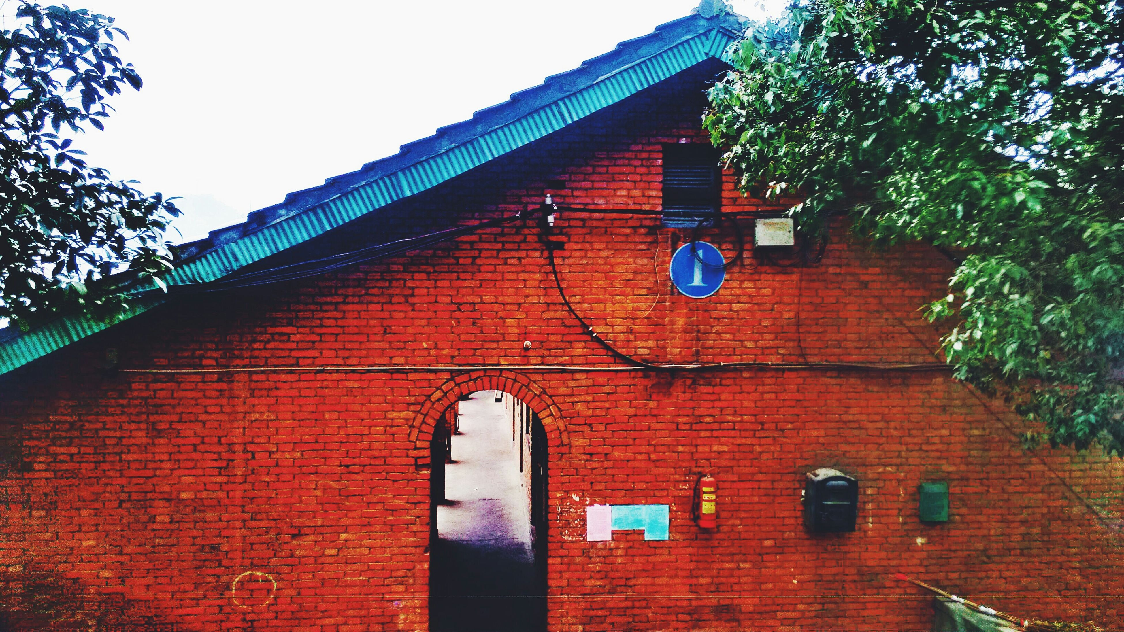 architecture, building exterior, built structure, low angle view, tree, brick wall, red, house, window, clear sky, day, outdoors, wall - building feature, no people, residential structure, sky, building, sunlight, residential building, growth
