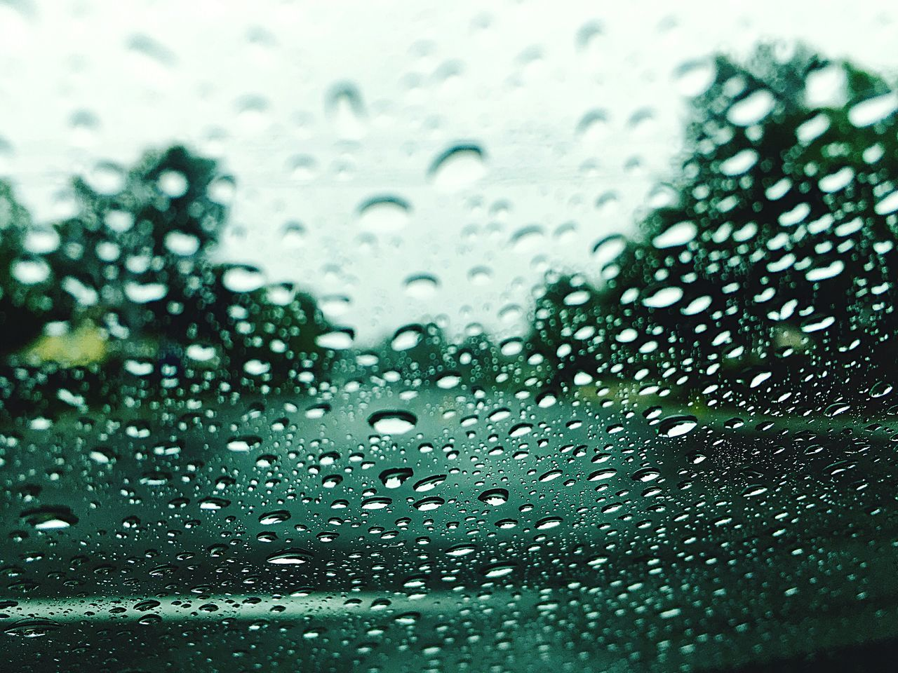 Let it Rain Riverside California