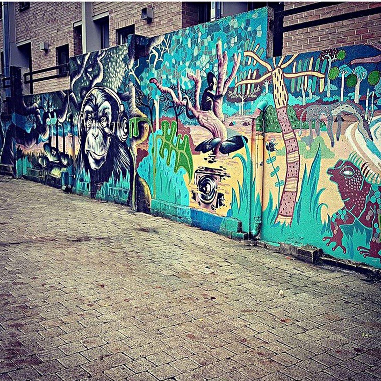 Streetart Belgium Louvainlaneuve