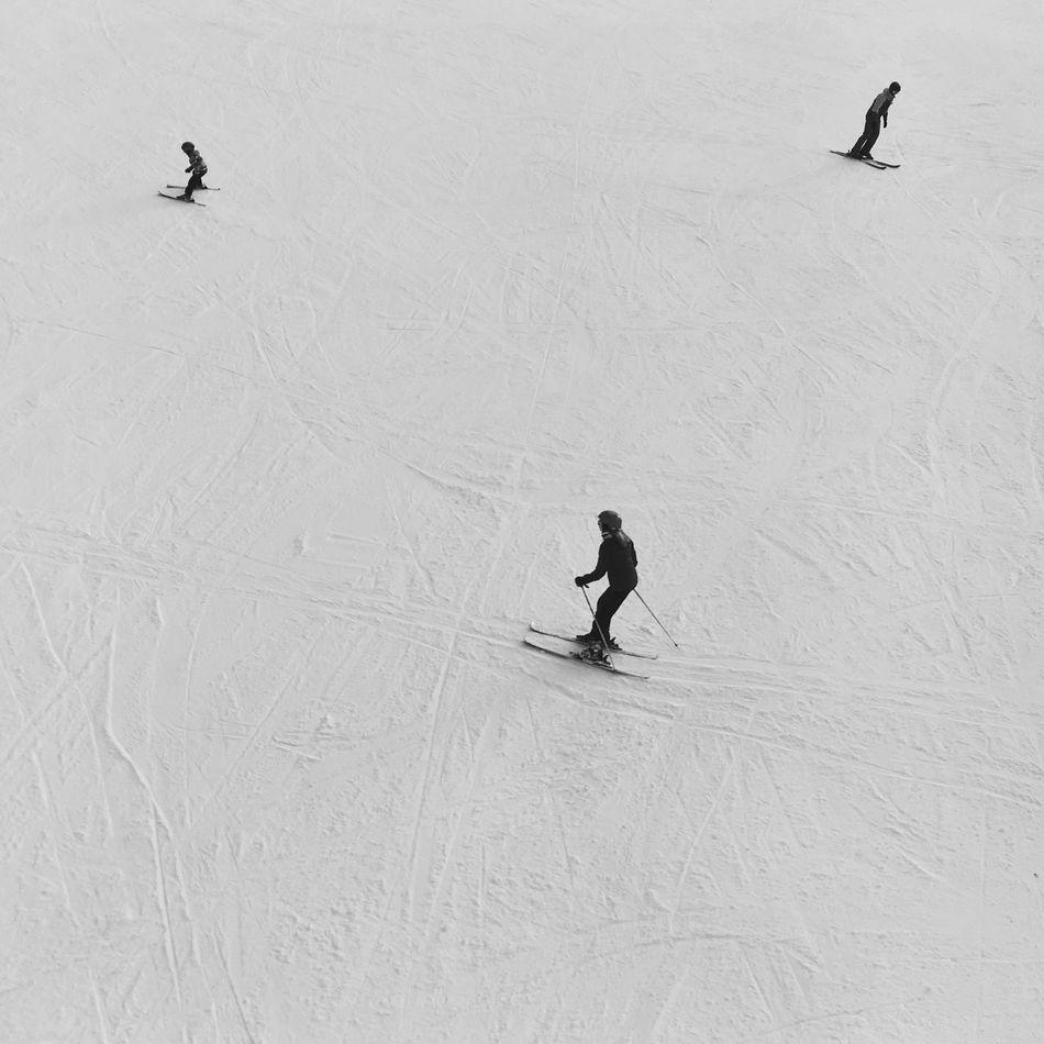 Snow Winter Skiing Leisure Activity Ski Holiday Ski Track Winter Sport Outdoors Sport Lifestyles Winter Wonderland Winter Landscape Fresh Tracks Three Skiers Which Way? Which Way To Go? Black And White
