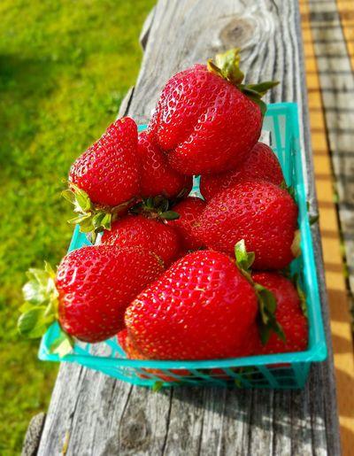 Strawberries Rustic Beauty Rustic Charm Red Wood