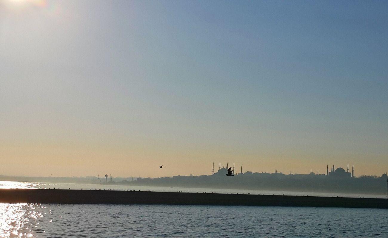 Ferry Boat Ride Trip Bestpic