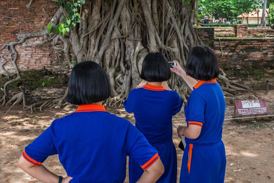 Trikaya. Ayutthaya (Thailand), 2016. Ayutthaya Buddhism Candid Colors Girls Streetphoto_color Streetphotography Thailand Togetherness Tree