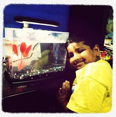 aquarium at Home by Archana