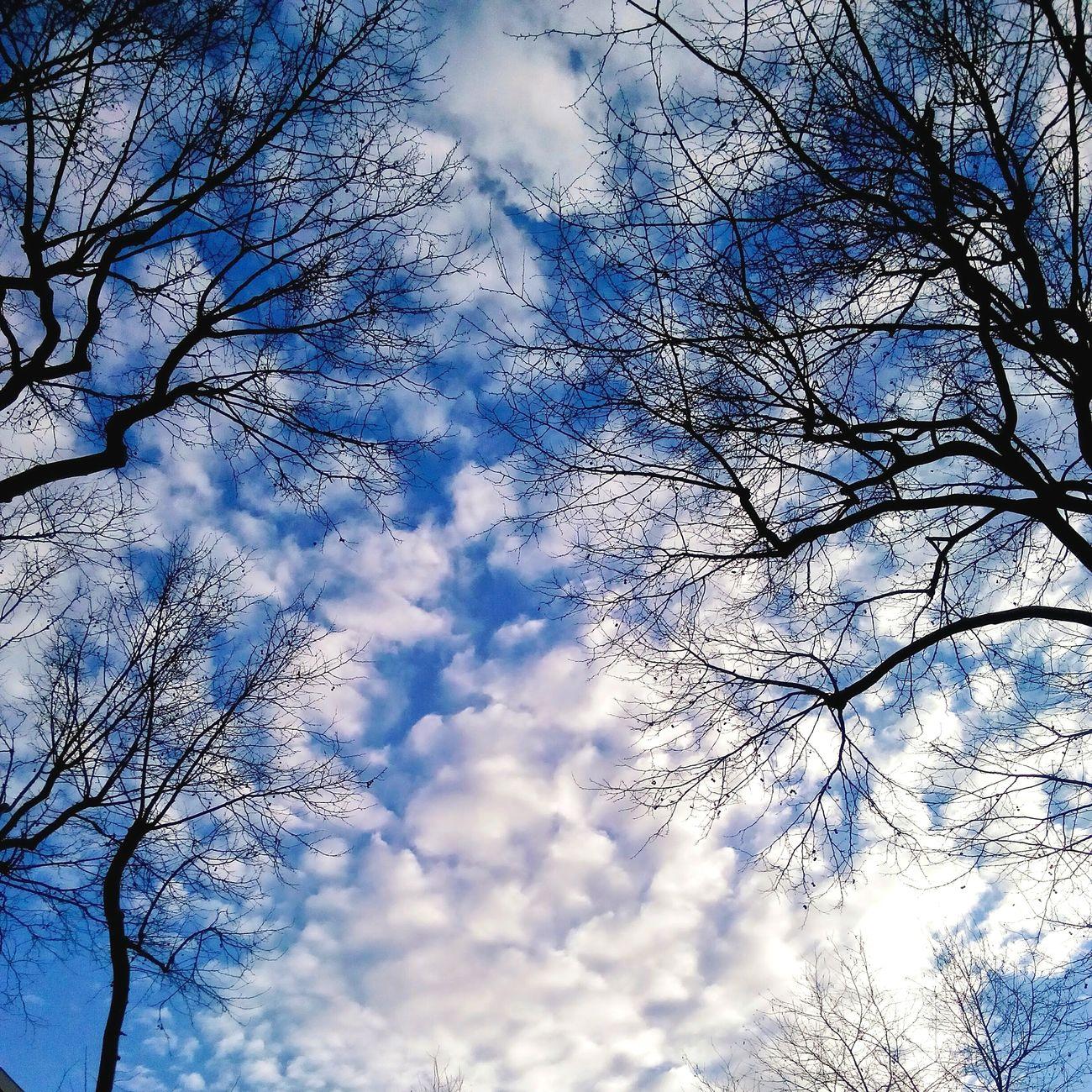Sky Blue Relaxing Cloud Hi! Freedom