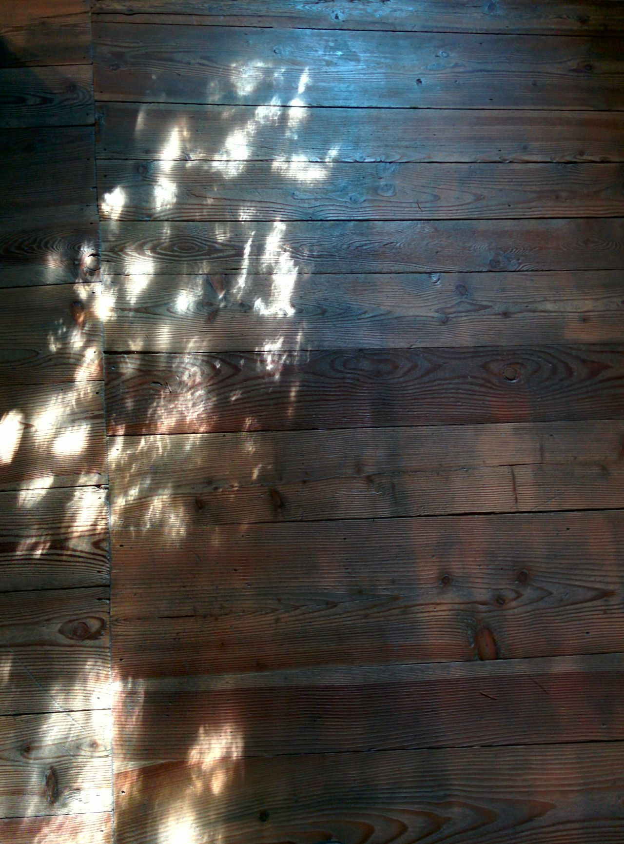 Introd Castellodintrod Reflections the sun on the parquet