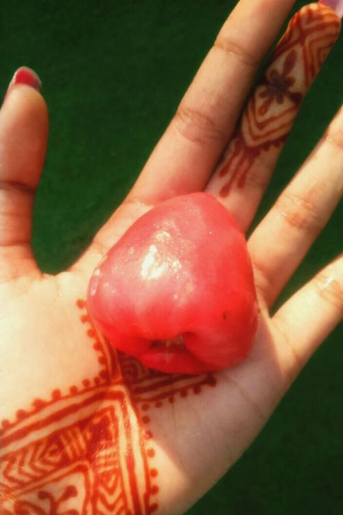 Rose Apple 😋 @mehendi @sweet_hands @love @photography ❤📷