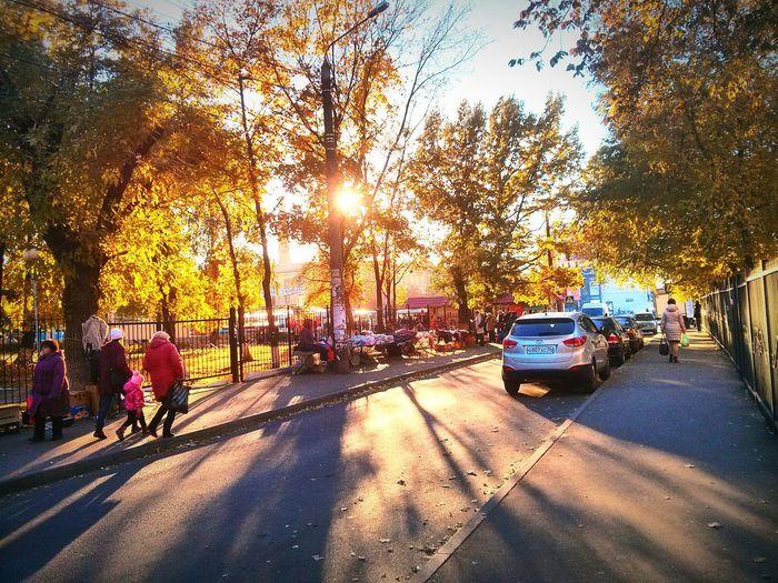 Осень First Eyeem Photo