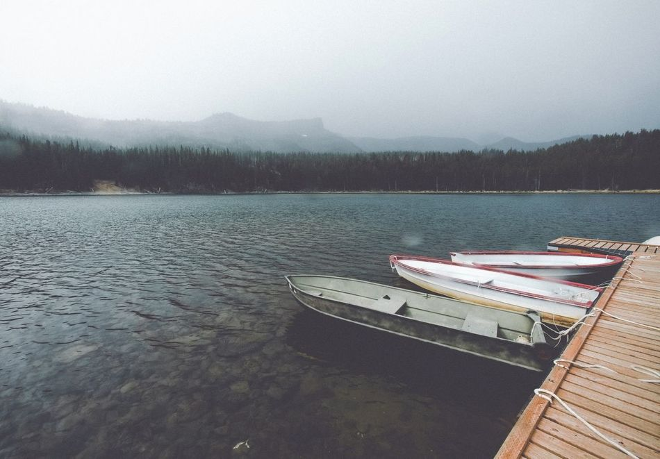 Harboring secrets Water Nature Tranquility Nautical Vessel Scenics No People Lake Tranquil Scene Beauty In Nature Tree Day Outdoors Sky Mountain Pacific Northwest  Central Oregon