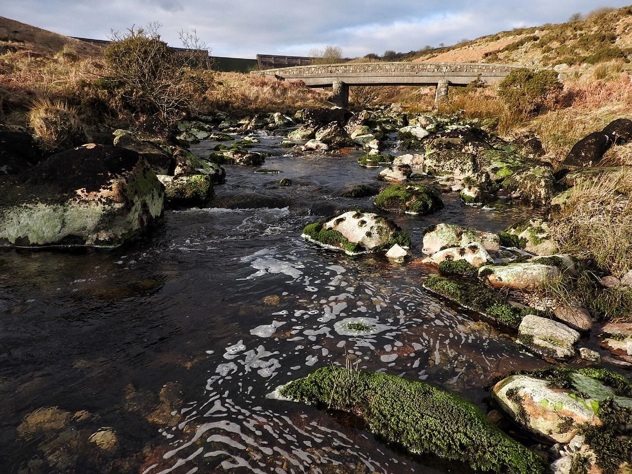 Avon Avon Dam Bridge Dam Day Devon Elevated View Flowing Froth Grass Moss Nature No People No People, Outdoors River River Avon Rock Stone Stream Walk Warm Water Water Flowing Down Water Flowing Over Rocks