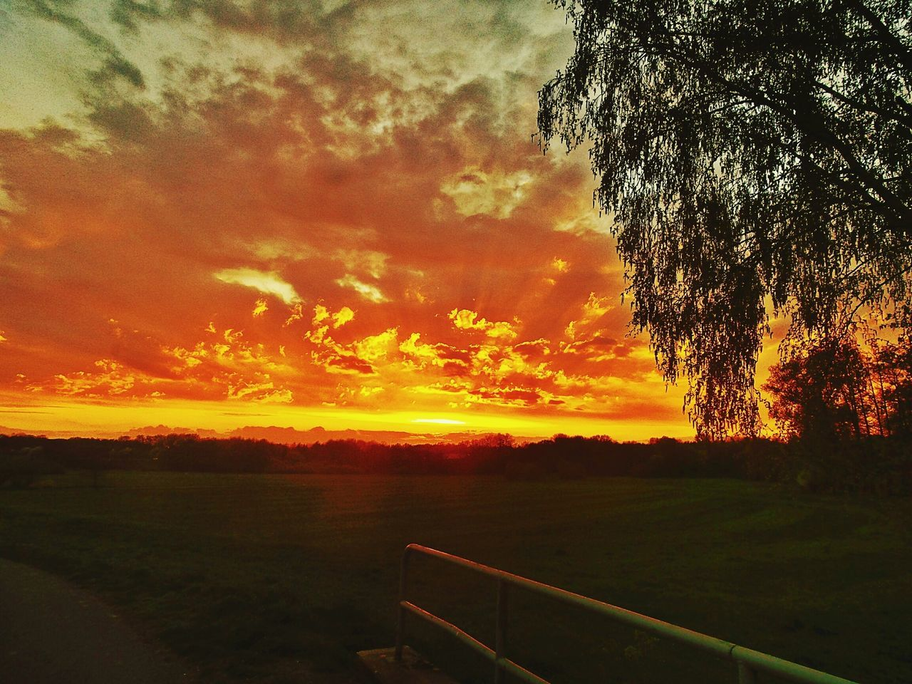 and another Sunset All Shades Of Orange Silhouettes Of Trees Silhouette And Sky Nature Beauty In Nature Tree Meadows On The Bridge Sky Sky And Clouds Cloud - Sky Scenics Day Outdoors No People Kinzig Meadowlands Germany🇩🇪