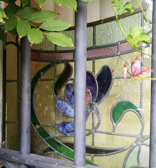 Leaf Plant Prison Architecture Urban Architecture Belgium Protection Security Prison? Beauty Vitraux Façade Explore Secret Window Discrétion