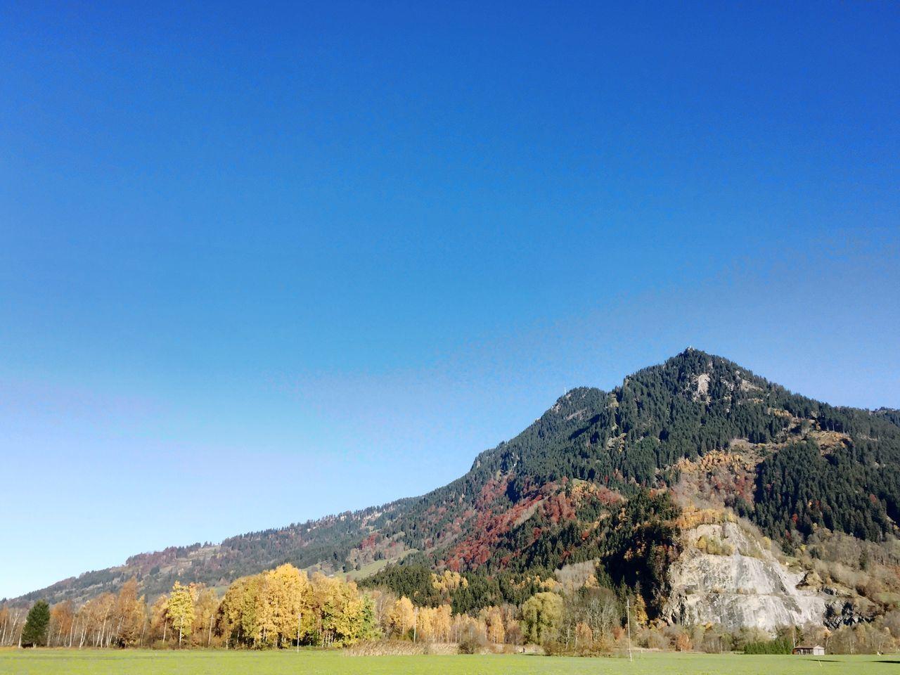 Grünten und Hörnle im Herbst Im Allgäu