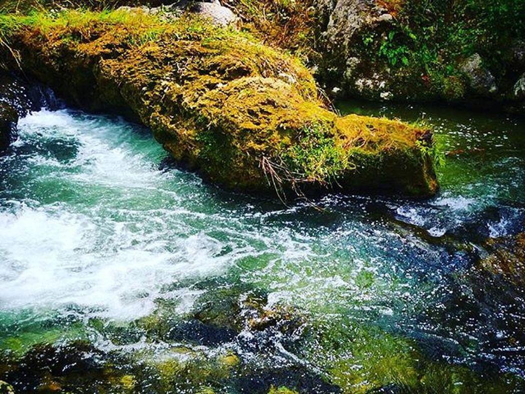 Maraetotara River Riverrocks Rushingwater Aotearoa NZ Newzealand Hawkesbay Nature Natureromantix Picoftheday Igworldclub Shinephotochallenge Ss_green_04