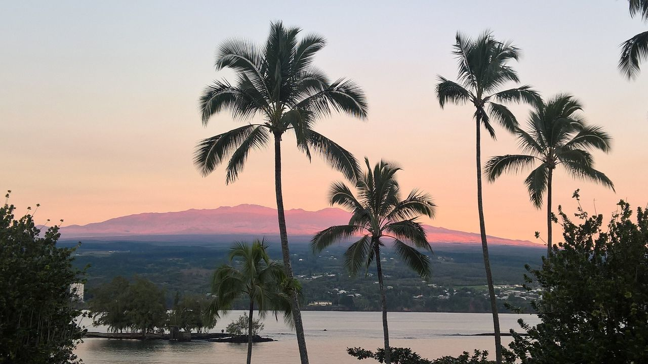 Beauty In Nature Big Island Big Island Sunrise Hawaii Majestic Mauna Kea Mountain Nature No People Orange Color Palm Tree Scenics Sky Sunrise Tourism Tranquil Scene Tranquility Travel Destinations Tree Vacations Water ハワイ ハワイ島 マウナケア山 日の出 First Eyeem Photo