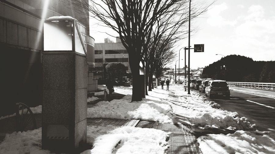 snow and Sendai morning