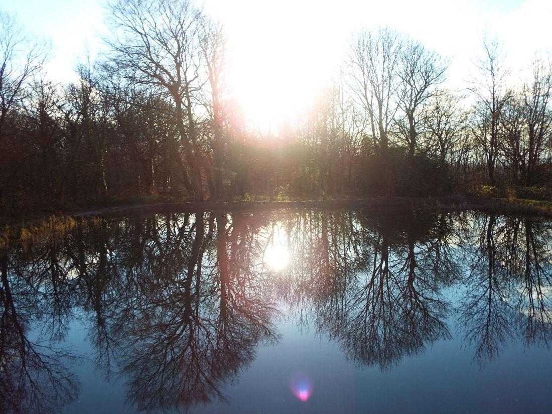 Haigh Hall Wigan United Kingdom Water Reflection