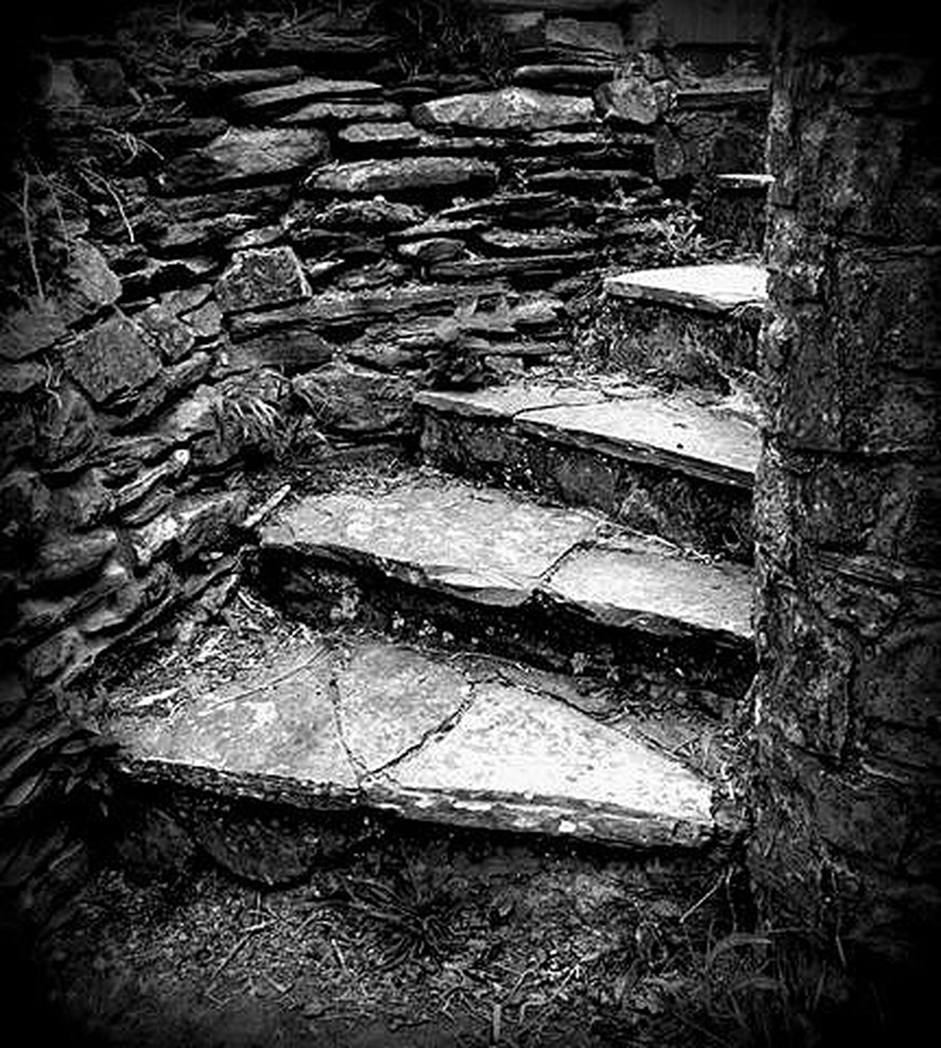 Bw_collection Stairs