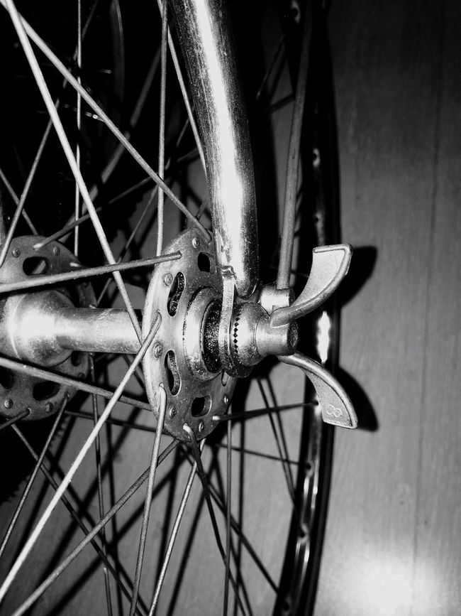 Butterfly Blackandwhite France Sport Bikes Rims Wheel Spokes Hub