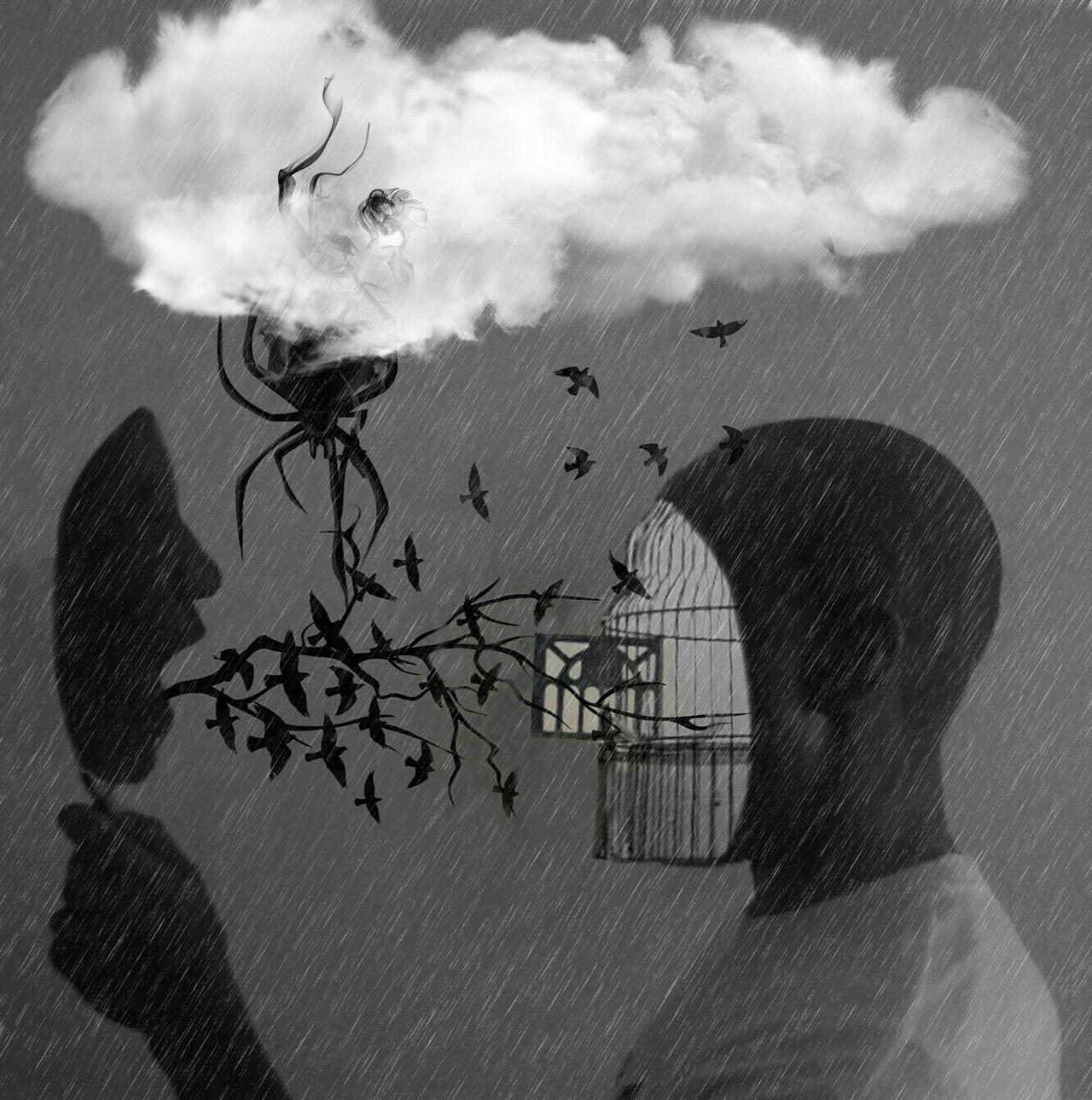 The Tempest #birds #blackandwhite #clouds  #creative Design #creative Power #mirrorshot #spiders #Surréalisme