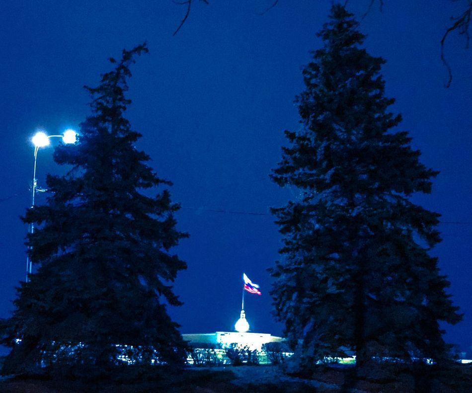 Tree Night Christmas Illuminated Christmas Tree Blue Architecture Christmas Decoration Built Structure Building Exterior Celebration Christmas Lights No People Outdoors Nature Sky Statue Sculpture Midnight липецк Lipetsk