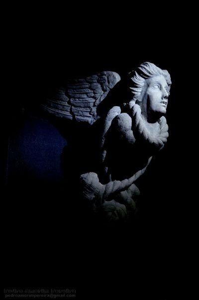Arpia Harpia Harpie Statue