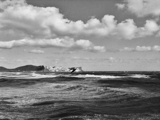 blackandwhite at Playa Sa Caleta by Marty