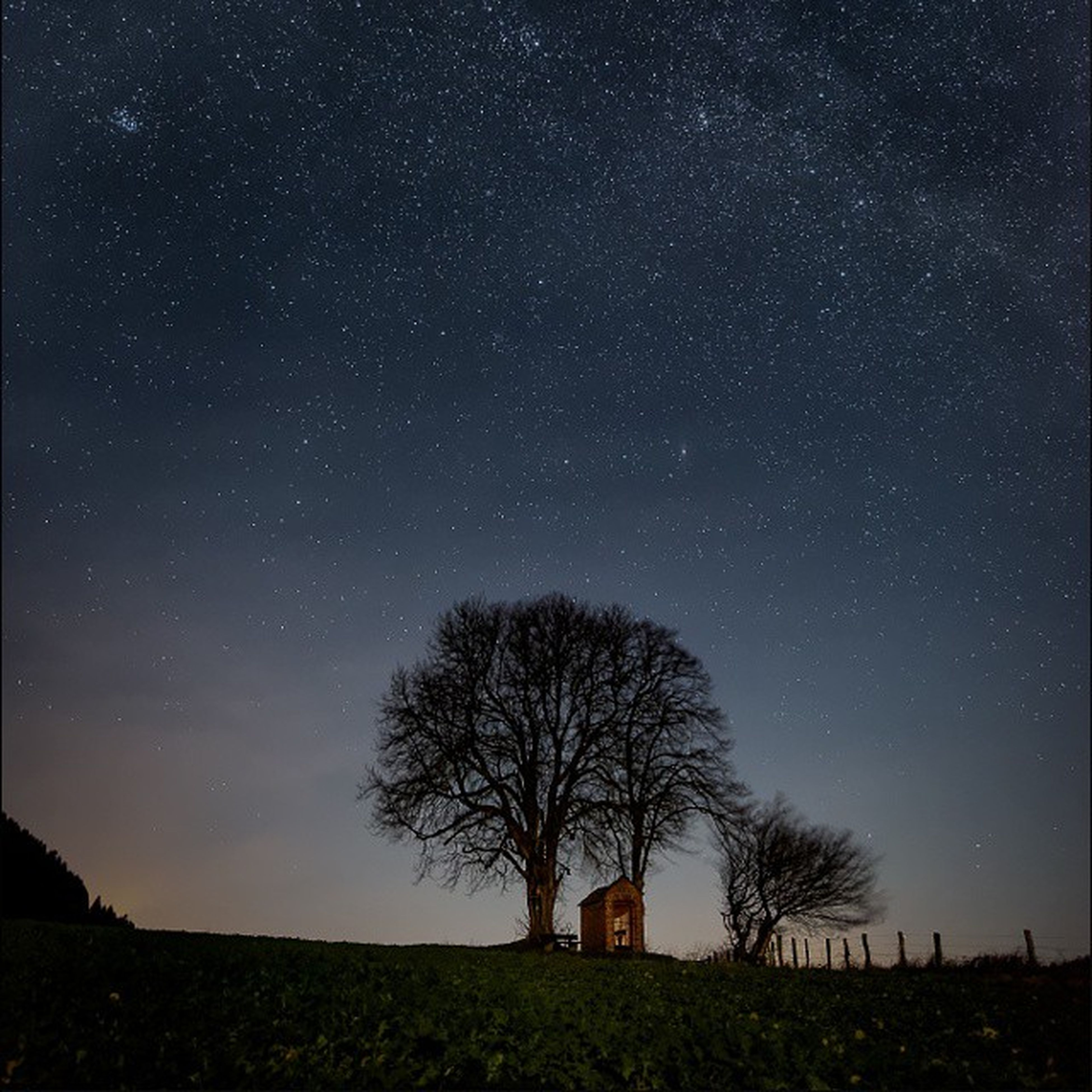 tree, night, star - space, tranquil scene, star field, tranquility, scenics, astronomy, beauty in nature, landscape, silhouette, nature, sky, galaxy, bare tree, idyllic, star, field, dark, low angle view