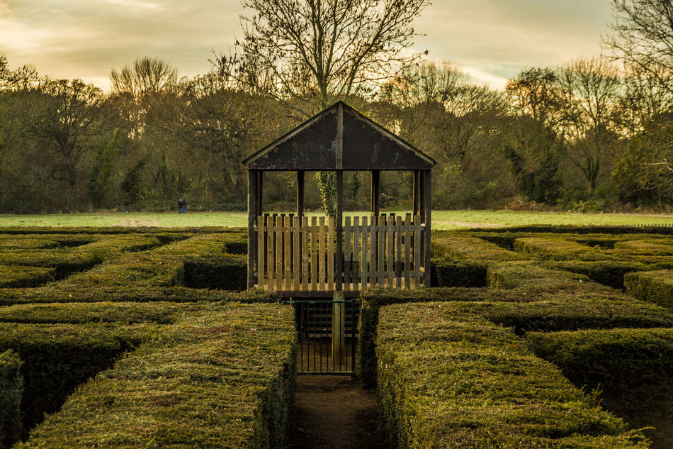Autumn Beauty In Nature Beauty In Nature Brent Lodge Park Cabin Cloud - Sky Day From Above  Get Lost Green And Yellow  House Lost In The Maze Maze Nature No People Outdoors Park Park Design Shapes Simetry Simmetry Sky Sunset Tranquility Tree
