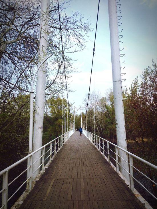 Bridge, Lines, River, Khorol
