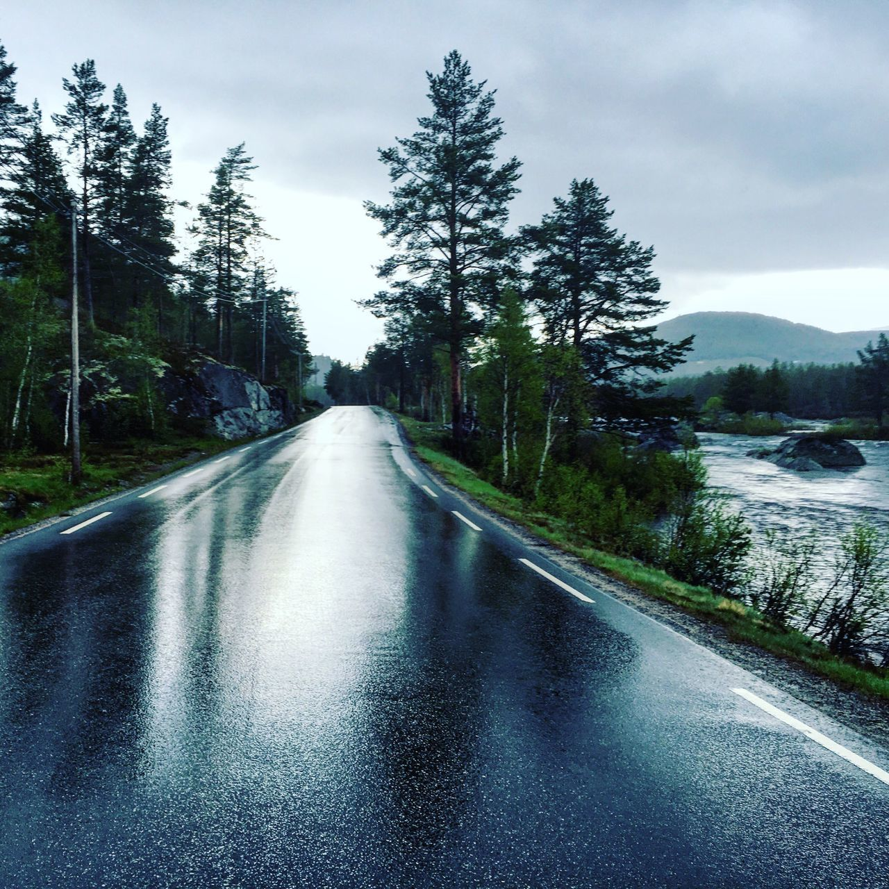 Tree The Way Forward Road Nature Forest Outdoors No People Beauty In Nature Day Scenics Landscape Street Rain After The Rain After Rain Freshness Way River Mountain Norway Norge Grey Sky Shiny Water Travel