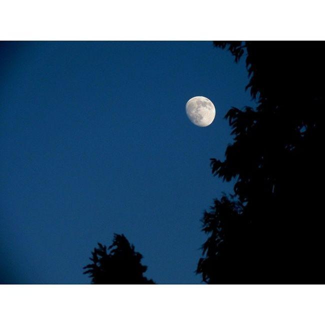 المغرب من 11 رمضان .. القمر في سماء حمص_العدية . حمص سوريا Homs Syria Moon
