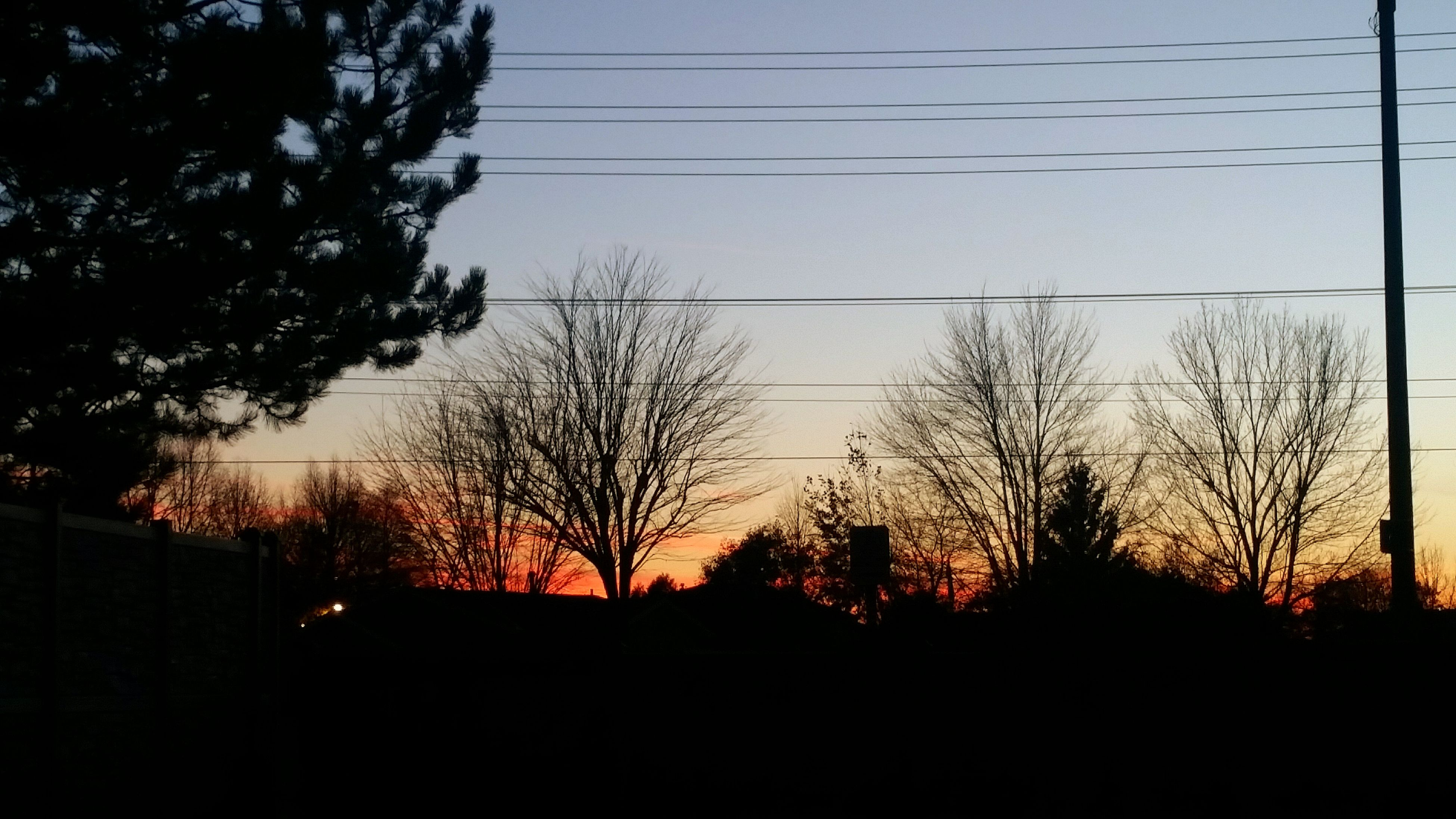 sunset, tree, silhouette, sky, nature, no people, tranquil scene, outdoors, beauty in nature, scenics, dark, tranquility, day