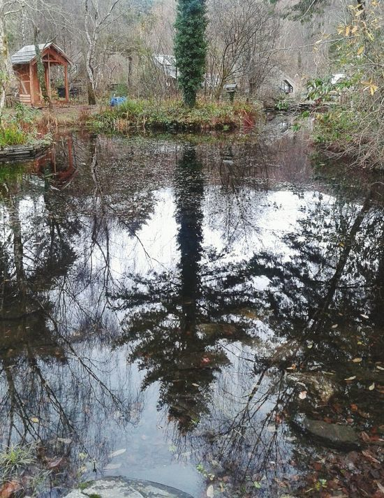 Had a nice day out at Center for Alternative Technology. Wales Pond Great Museum Reflection Autumn