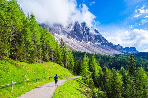 Alps Italy Church Cloud Dolomites, Italy Flower Green Valley Hiking Italy Mountain Rock Summit Trail Valley
