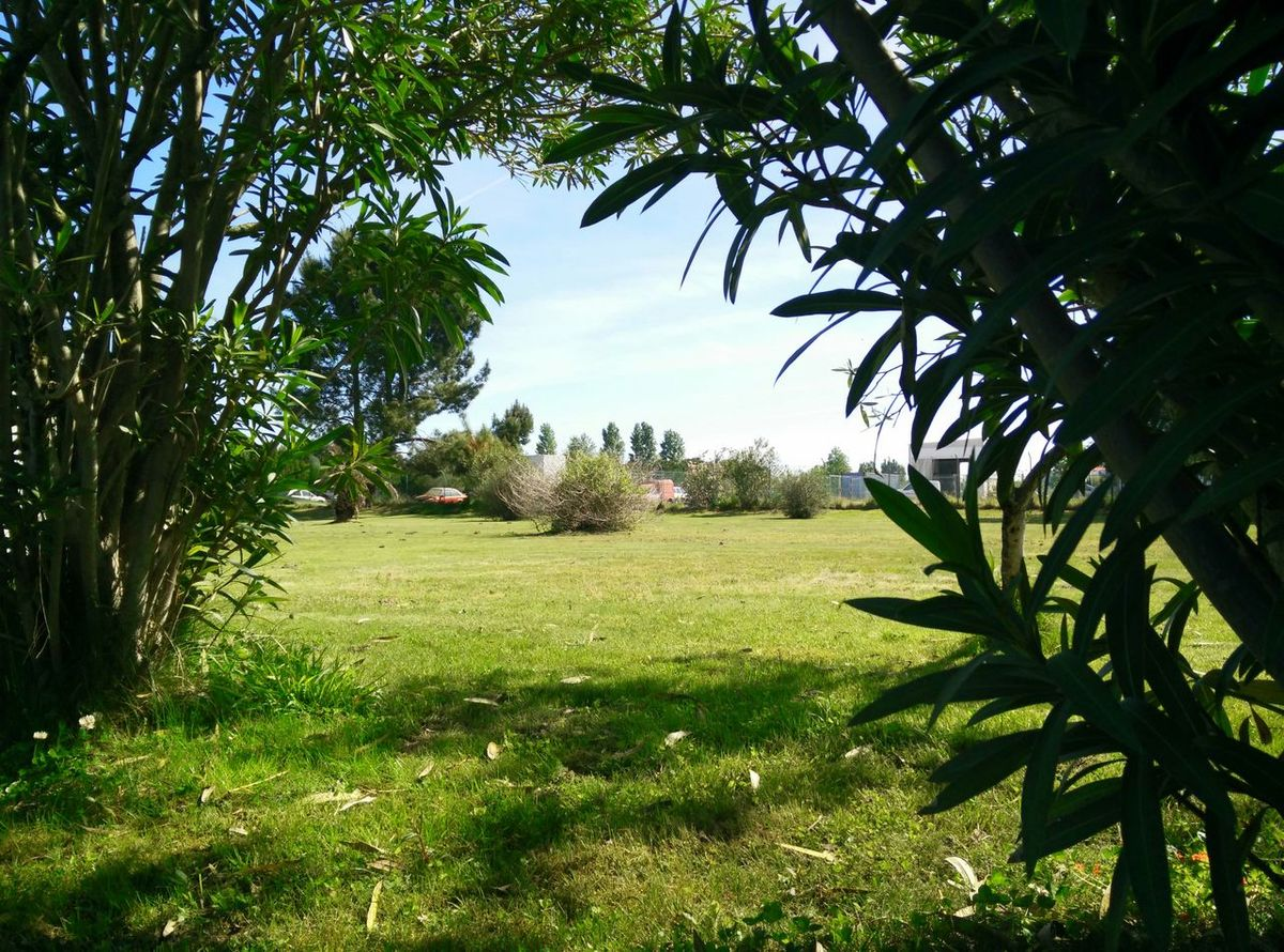 Portugal Work Break Quinta Do Anjo Green
