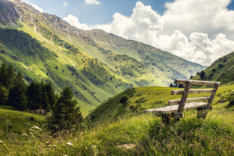 Beautiful stock photos of peaceful,  Beauty In Nature,  Bench,  Day,  Gras