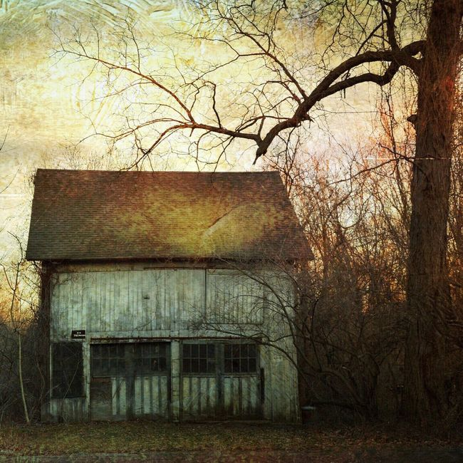 Abandoned Abandoned Buildings Decay Landscape Rural Scenes Beauty Of Decay Trees Grimey Dark Moody House