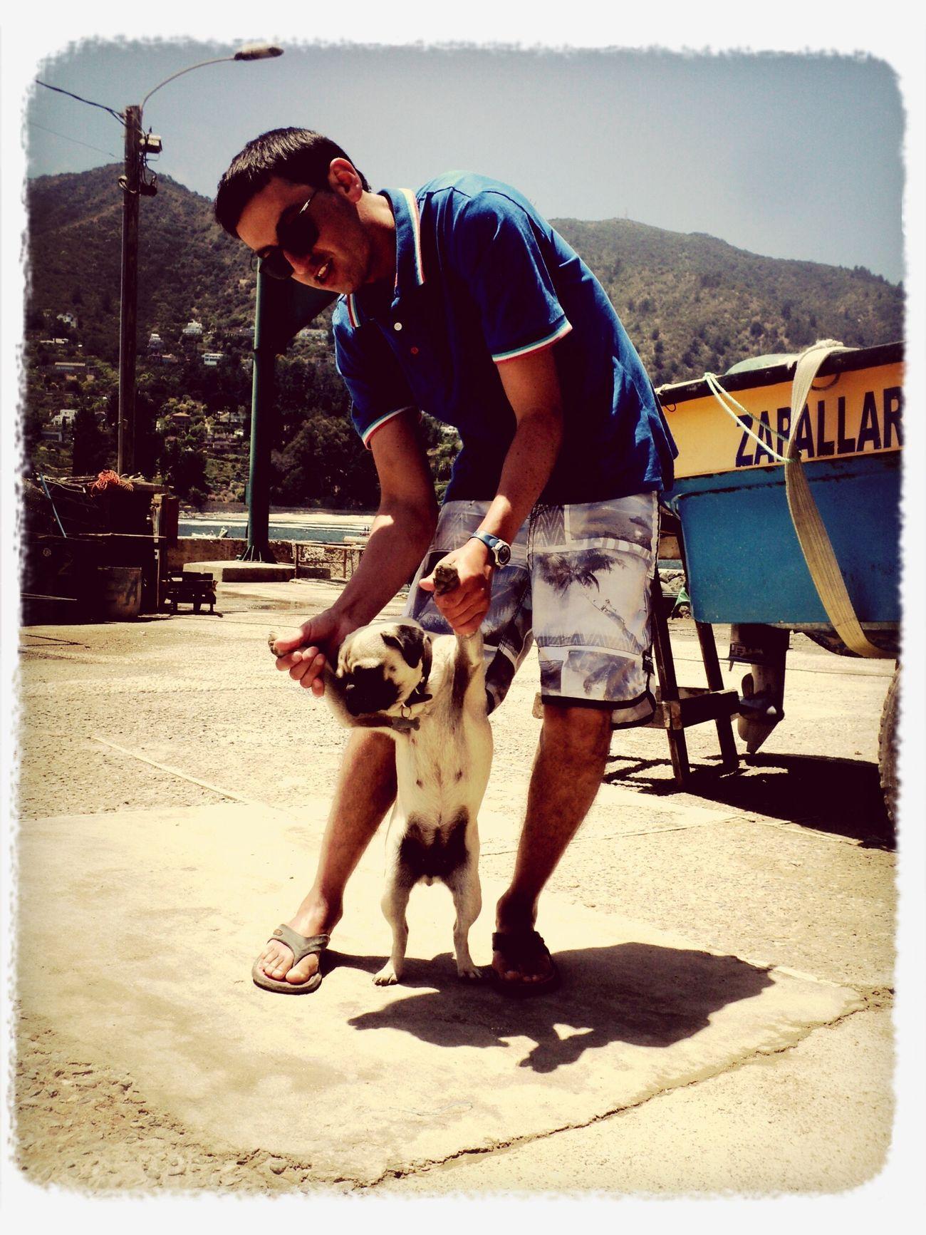 la Mica bailando con el Mauro ✌️ Summer2014 Summerismagic Doglovers Friends