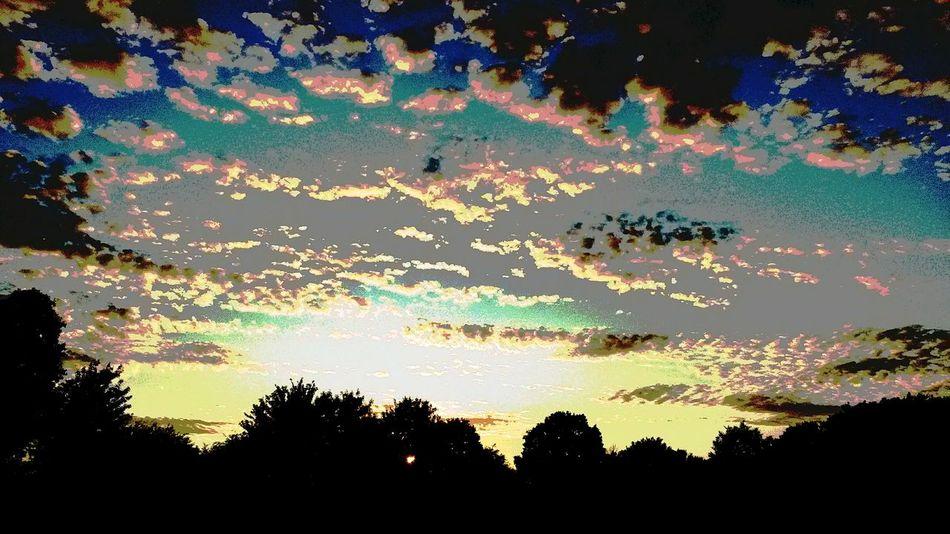 Sky Clouds Belhus Walking The Dog Sunset #sun #clouds #skylovers #sky #nature #beautifulinnature #naturalbeauty Photography Landscape [ By Leesa Morris South Ockendon Belhus Woods Country Park