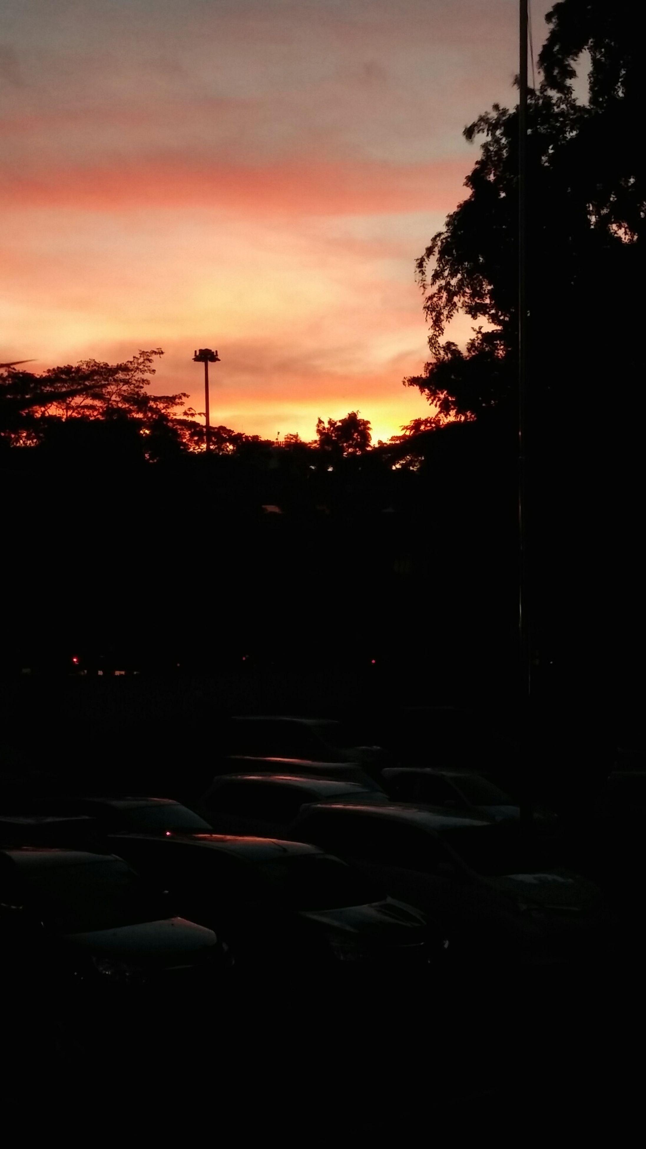 sunset, silhouette, tree, transportation, sky, car, land vehicle, orange color, street light, mode of transport, cloud - sky, road, street, dusk, nature, scenics, tranquility, cloud, beauty in nature, dark