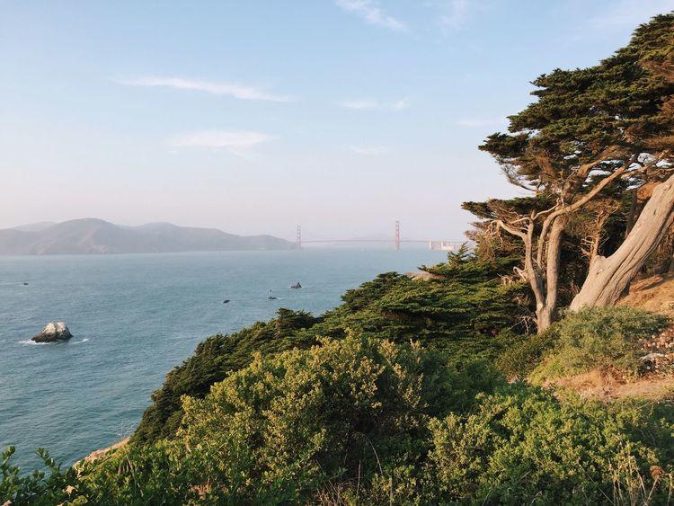 Beauty In Nature Coastline Golden Gate Bridge Horizon Over Water Landscape Nature Outdoors Remote San Francisco San Francisco Bay San Francisco Bay Bridge Tranquility Water