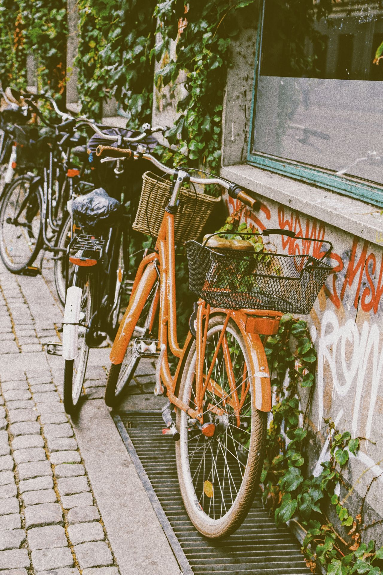Bicycle Mode Of Transport Land Vehicle Transportation Stationary Parking Outdoors Bicycle Basket Day No People Cityview Vintage Vintage Style Wall Rustic Style Bicycle Parking Transportation Fence Street Photography Vintage Stuff City View  Rustic Charm Rustic Beauty City Street Outdoor Photography