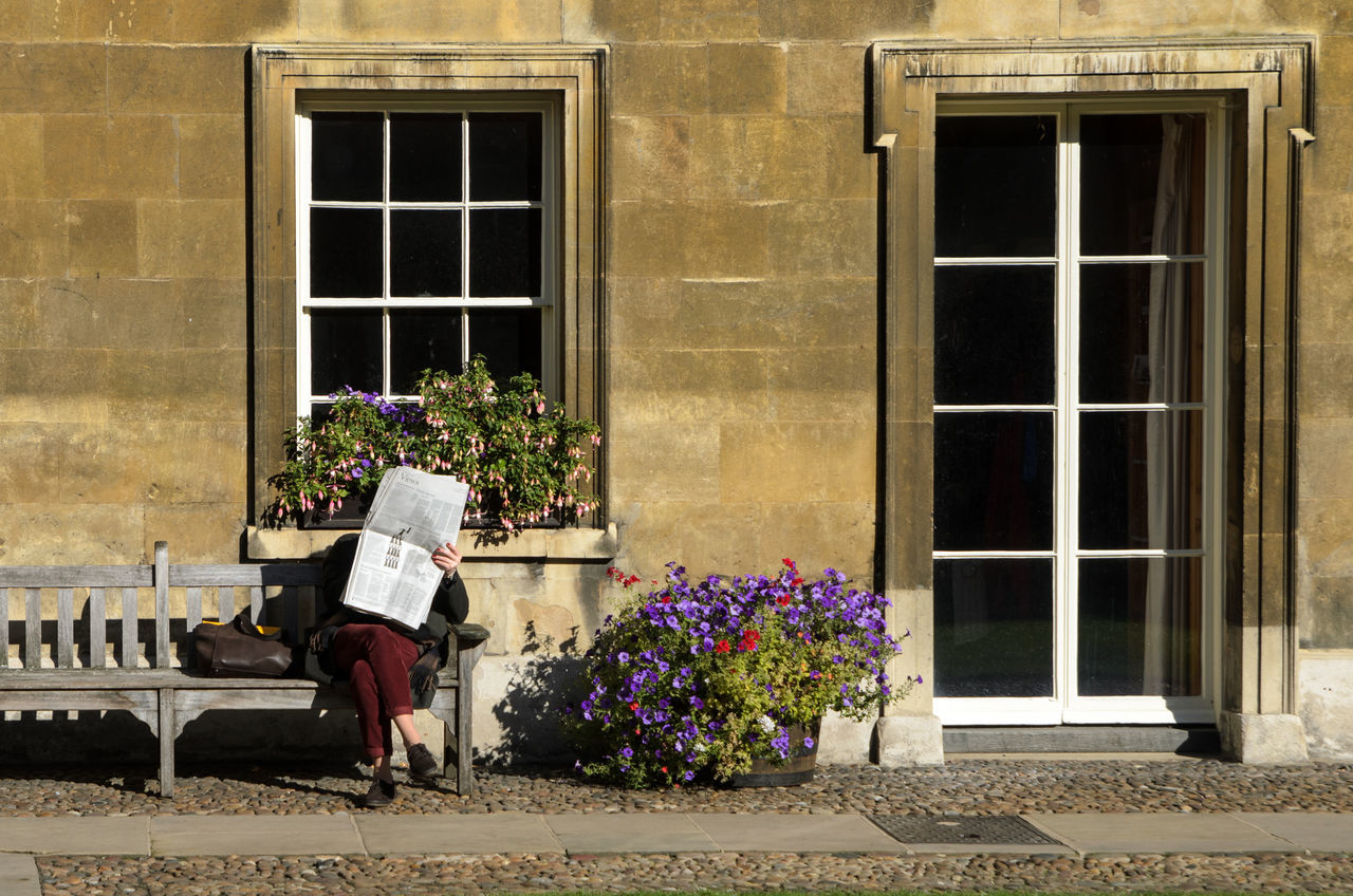 Woman reading newspaper on a bench in Cambridge, England Architecture Bench Building Exterior Built Structure Cambridge Campus College Education Flower Historical Building Medieval Newspaper One Person Outdoors People Reading Real People Sitting Stone Wall United Kingdom University Window Women
