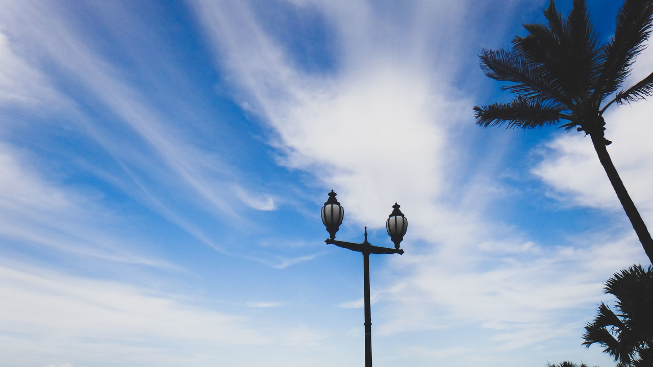 Blue Blue Sky Cloud - Sky Day Lamp Post Low Angle View Nature No People Outdoors Palm Tree Sky Street Lamp Tree