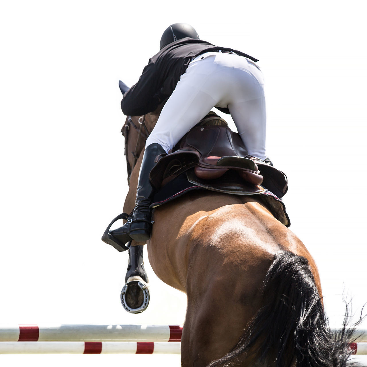 Rear View Of Person Jumping With Horse In Competition