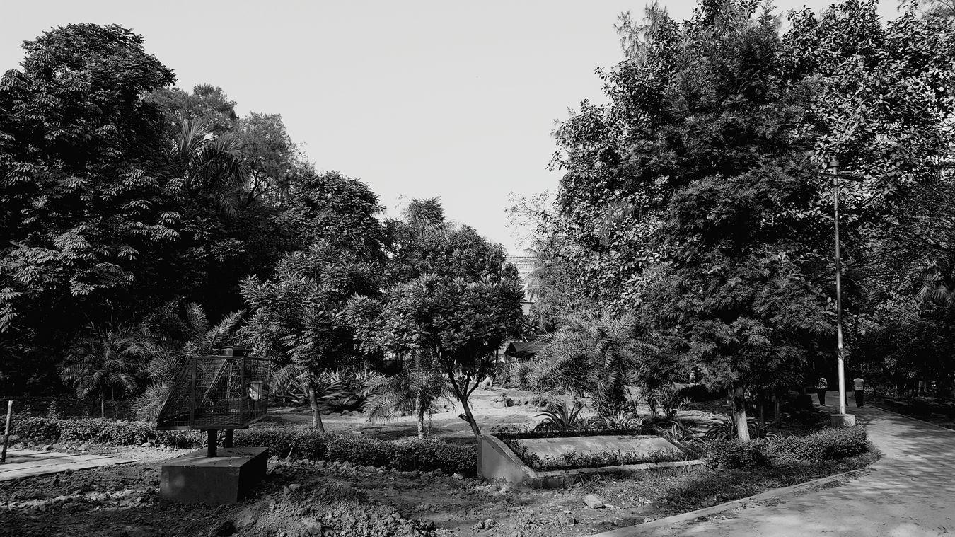 Aweome.. Nature...green.... i Love this.... Eden Garden.