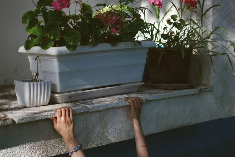 Don't let go Plant Flower Front Or Back Yard Real People One Person The Week On EyeEm Women The Week On EyeEm Editor's Picks