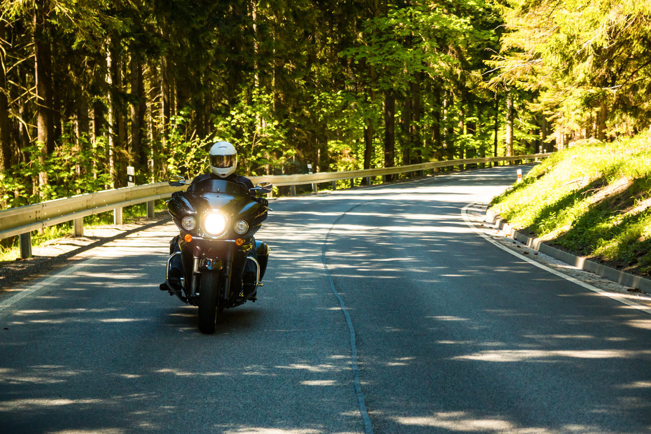 Adult Biker Day Helmet Men Motorcycle Nature One Man Only One Person Outdoors People Real People Riding Road The Way Forward Transportation Tree